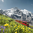 スイス旅行特集