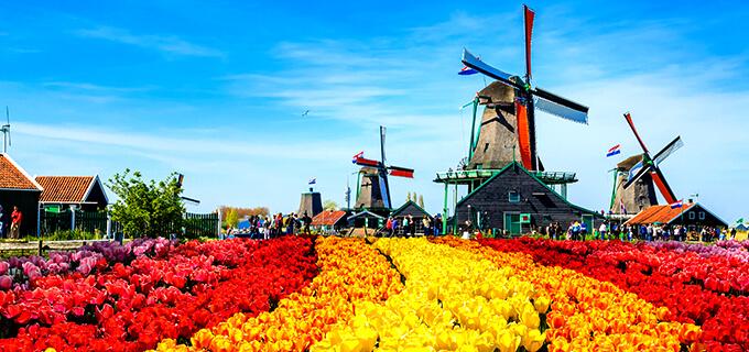 「オランダ」の画像検索結果