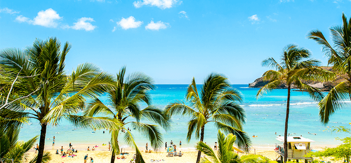 ハワイ・カリブ海