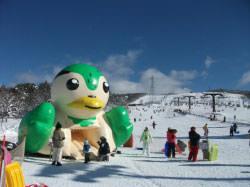 ひるがの高原スキー場のゲレンデ写真