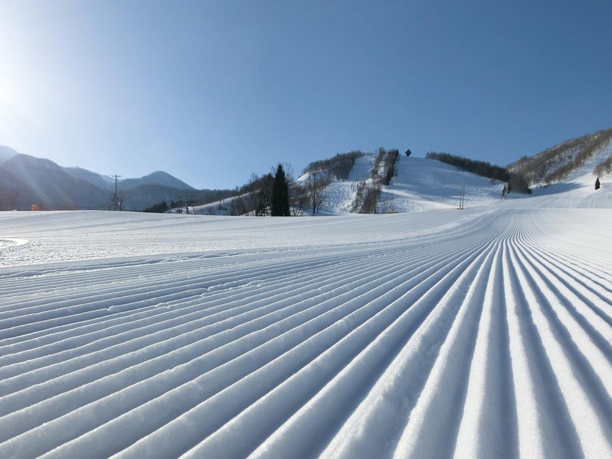 飛騨ほおのき平スキー場のゲレンデ写真