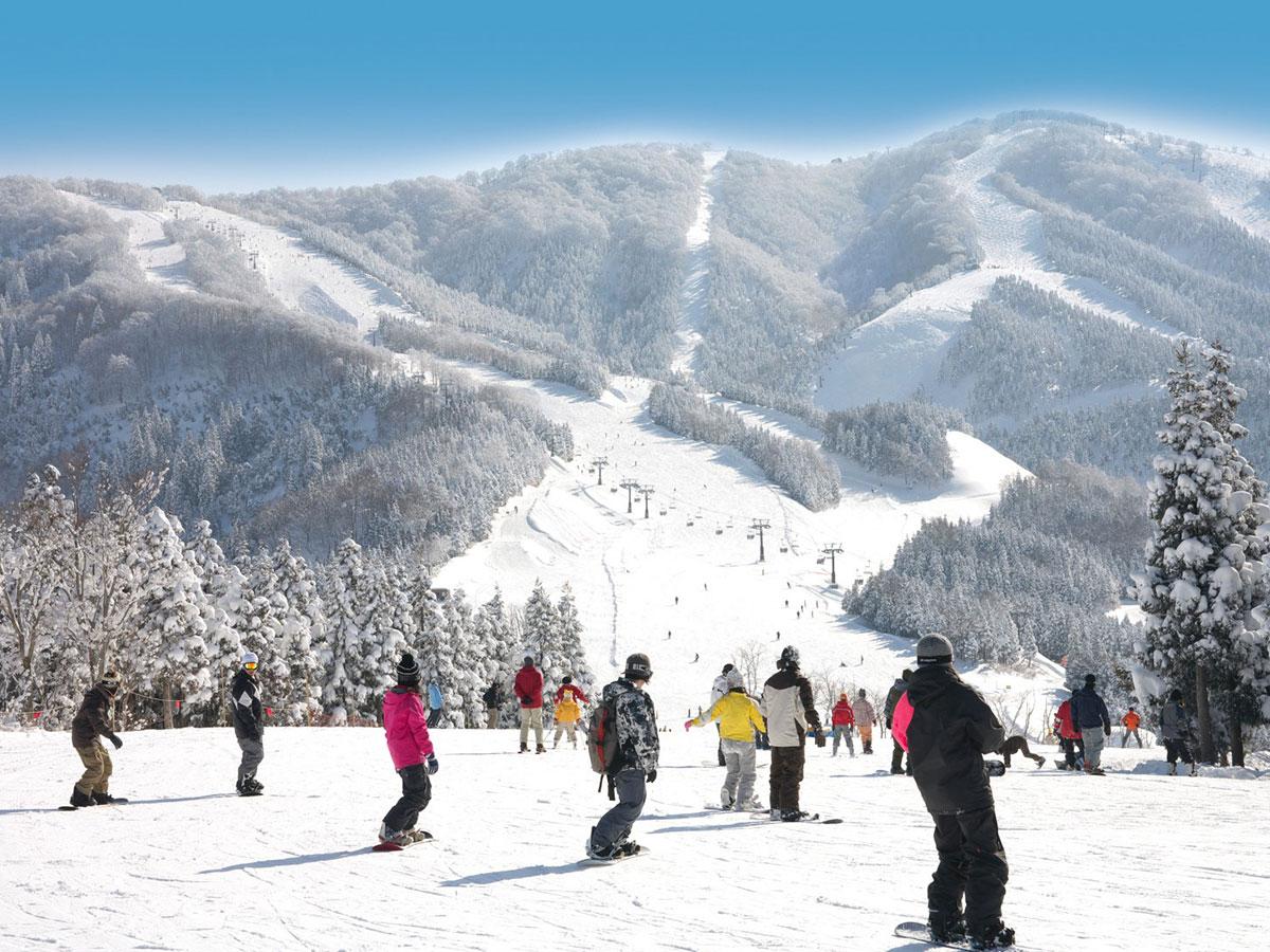 スキージャム勝山のゲレンデ写真