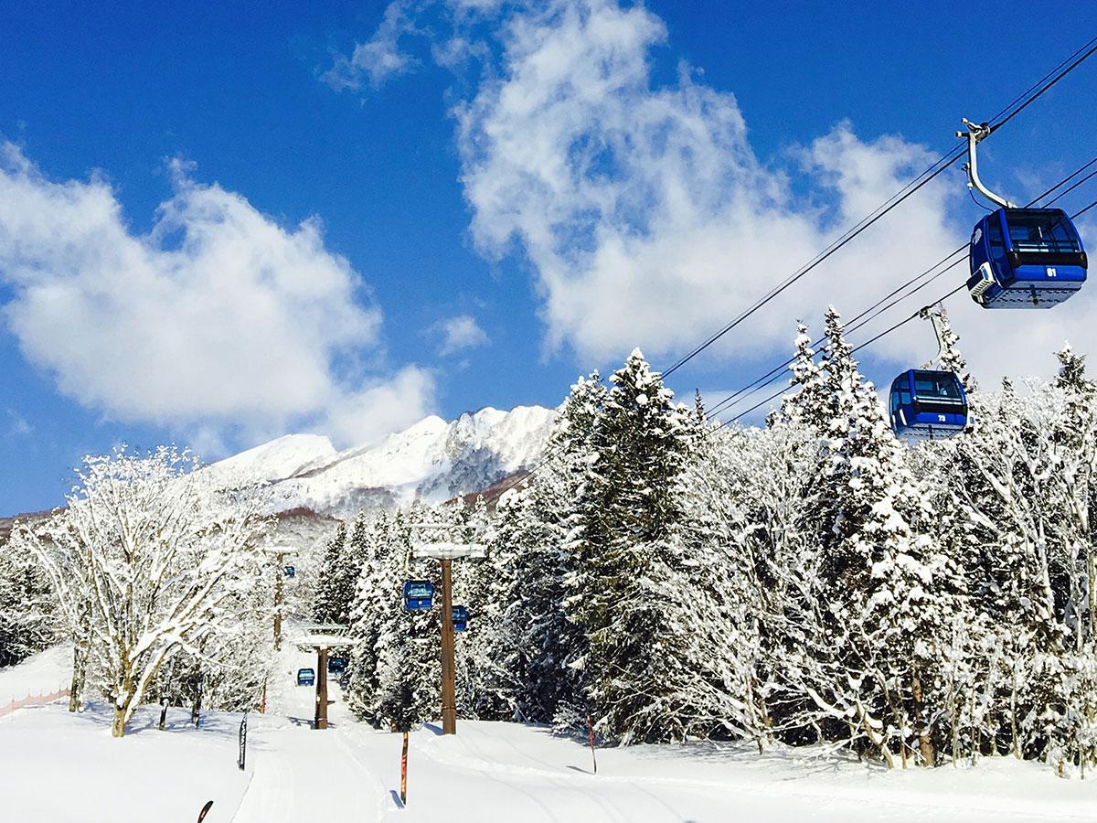 妙高杉ノ原スキー場のゲレンデ写真