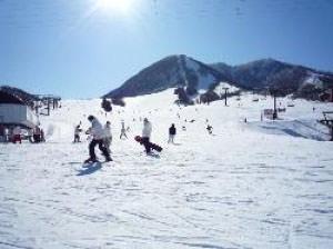 北信州 木島平スキー場のゲレンデ写真