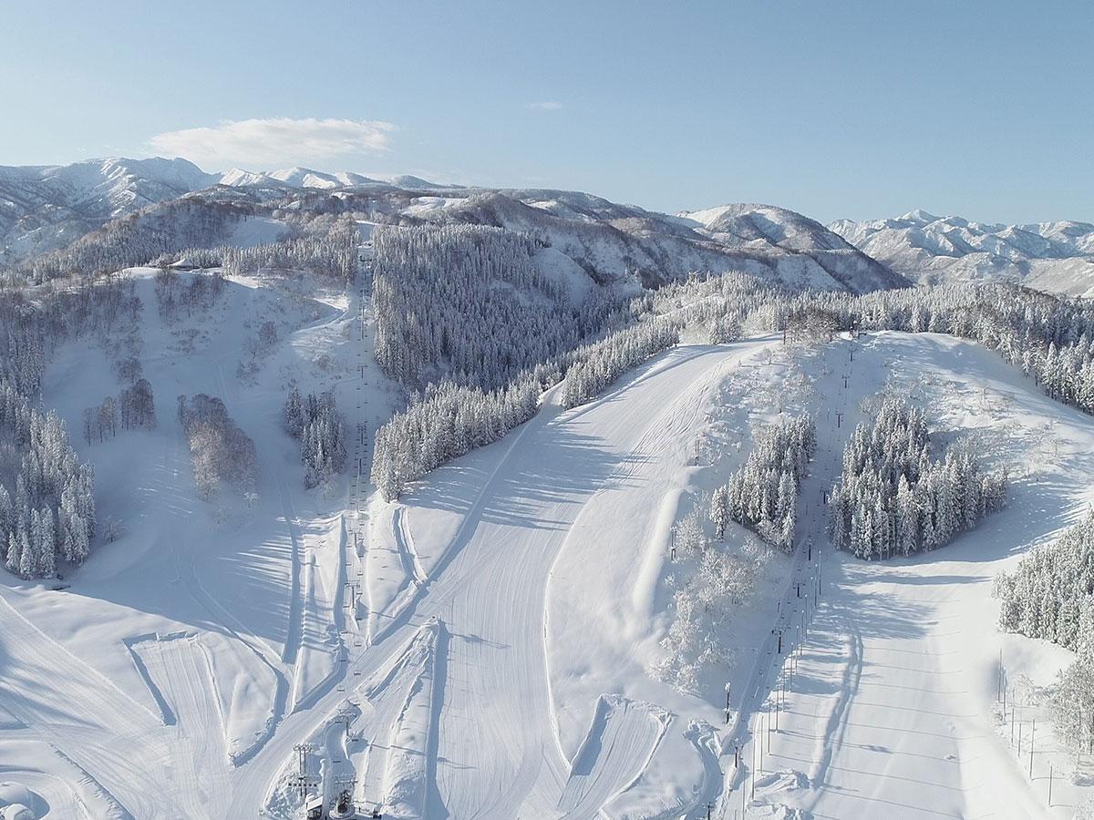 ニュー・グリーンピア津南スキー場のゲレンデ写真