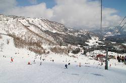 ハチ北高原スキー場のゲレンデ写真