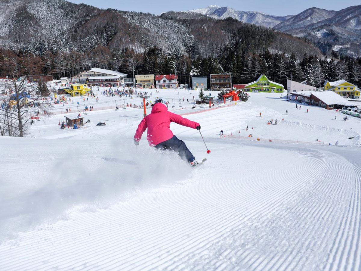 かたしな高原スキー場のゲレンデ写真