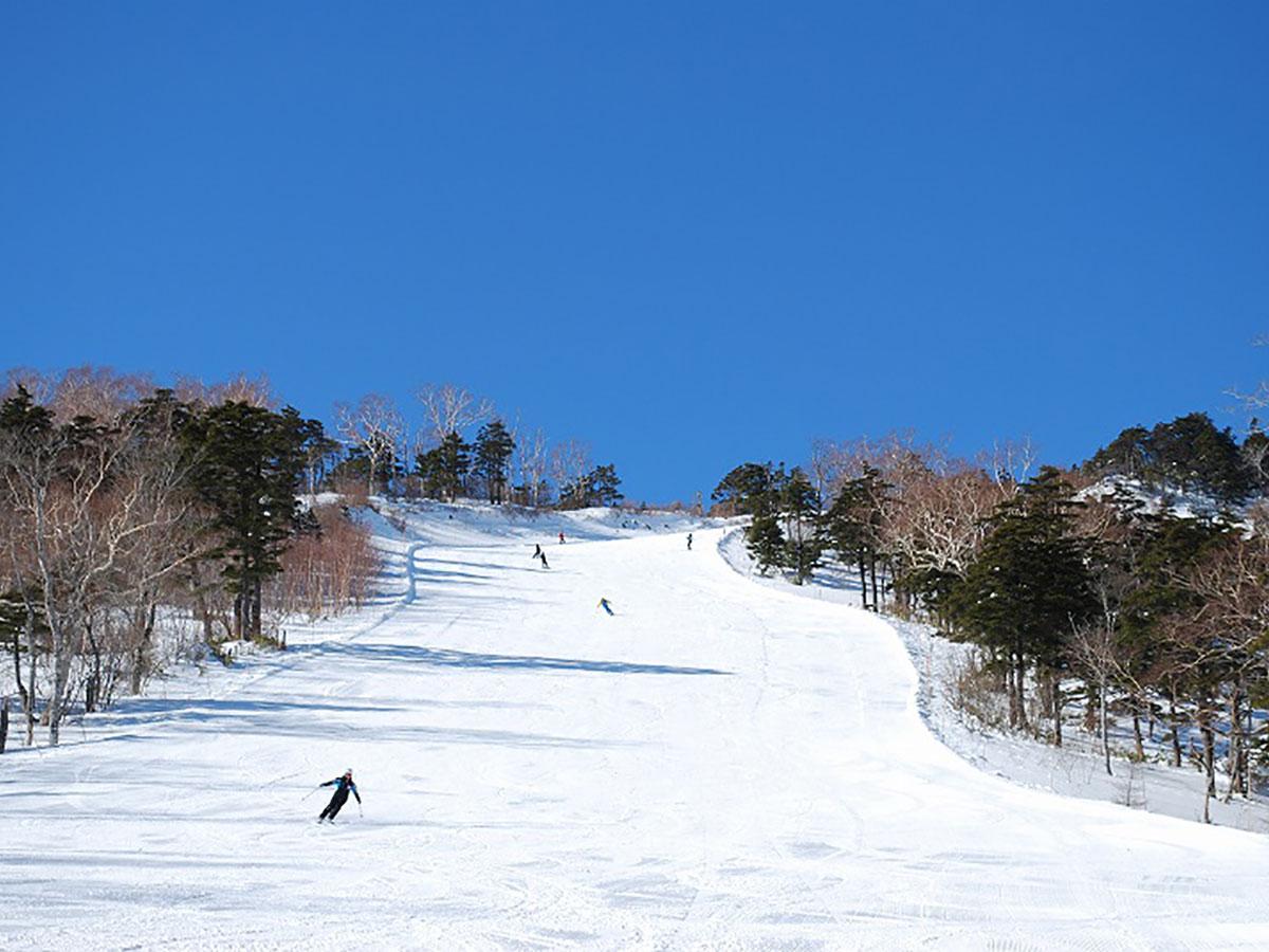 オグナほたかスキー場のゲレンデ写真