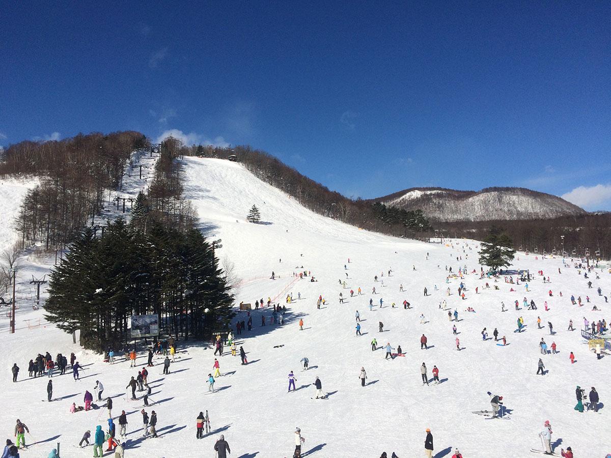 草津温泉スキー場のゲレンデ写真