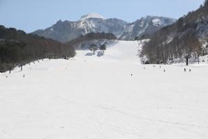 裏磐梯スキー場のゲレンデ写真