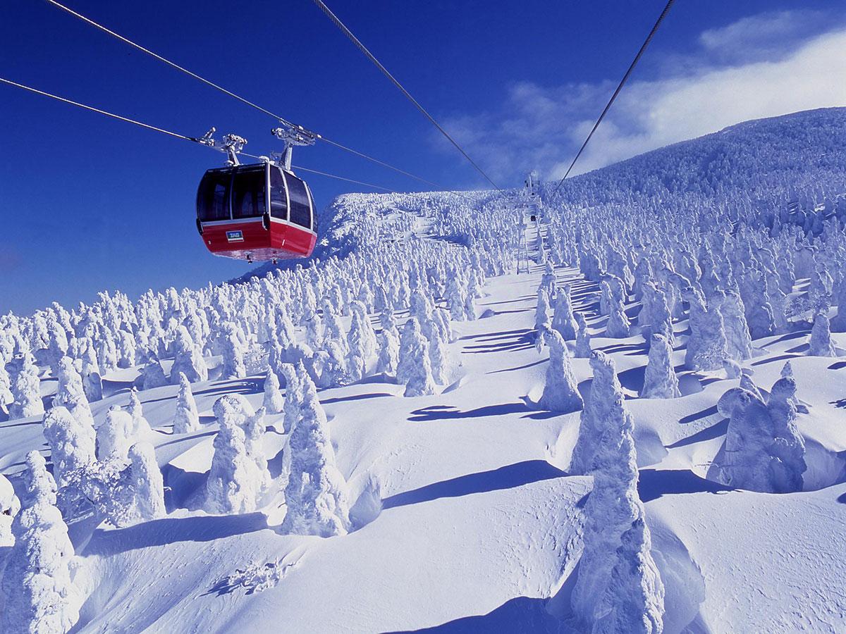 山形蔵王温泉スキー場のゲレンデ写真