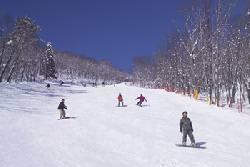 女鹿平温泉めがひらスキー場のゲレンデ写真