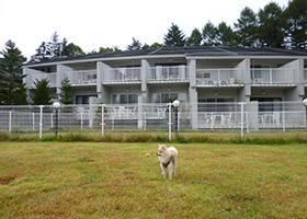 アート ホテル ドッグレッグ 軽井沢