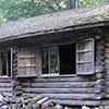富良野 ラベンダー畑〜麓郷の森